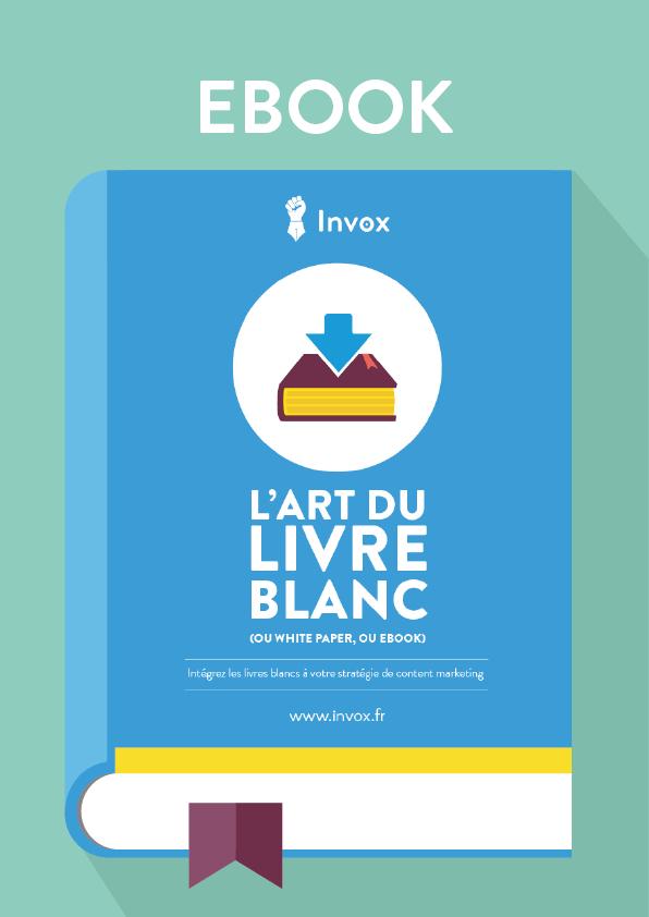 Content Marketing L Art Du Livre Blanc Dans Un Ebook