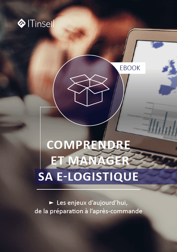 Exemple d'ebook by Invox : ITinSell