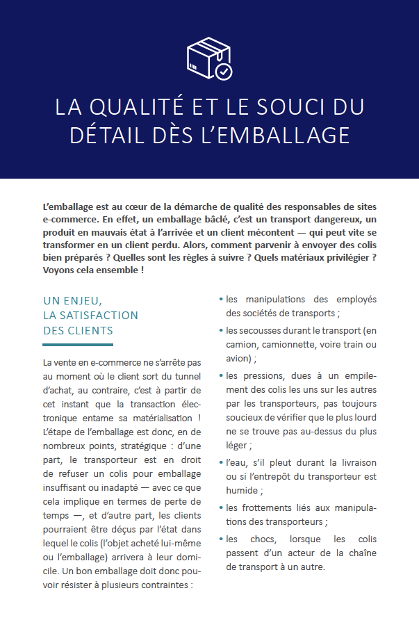 invox-exemple-ebook-itinsell-3